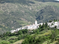 Andalusie7